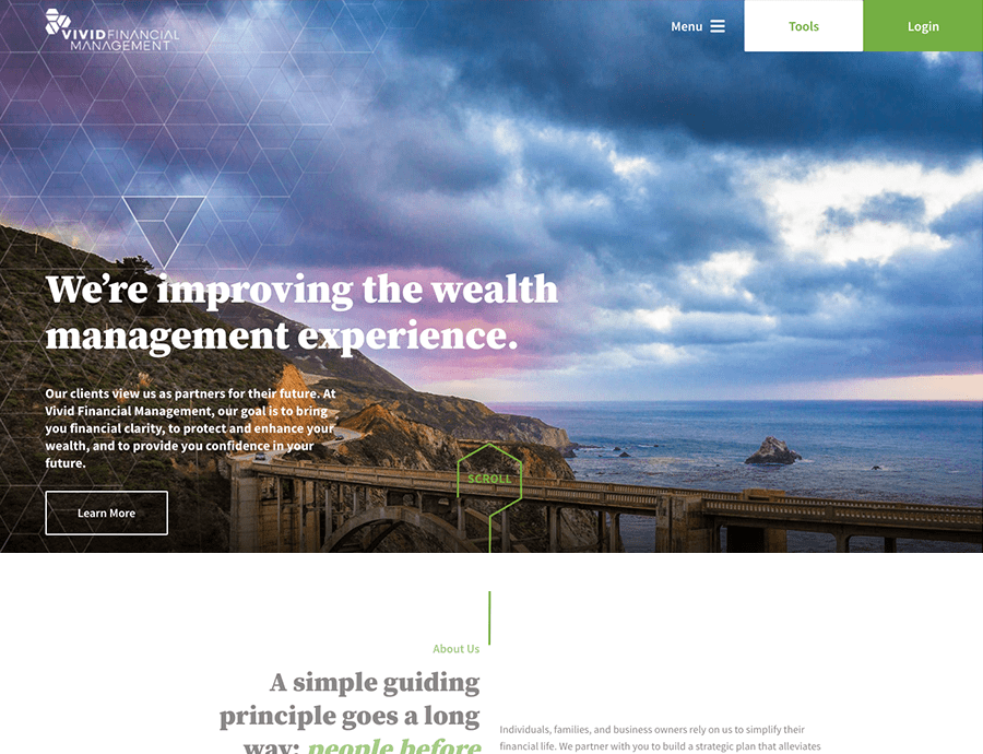 Vivid Financial Management